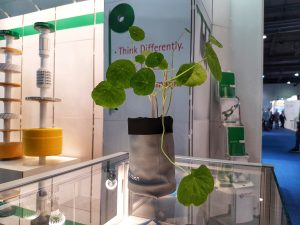 Textiles replace terracotta: growth rates for technical textiles are not the only things that are on their way upwards at the Lohman stand. There are nasturtium seeds growing too!